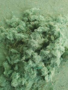 Hydromulch grün