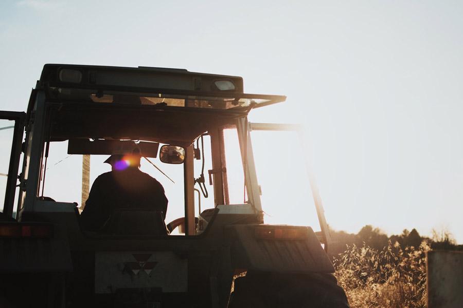 Dünger Landwirtschaft