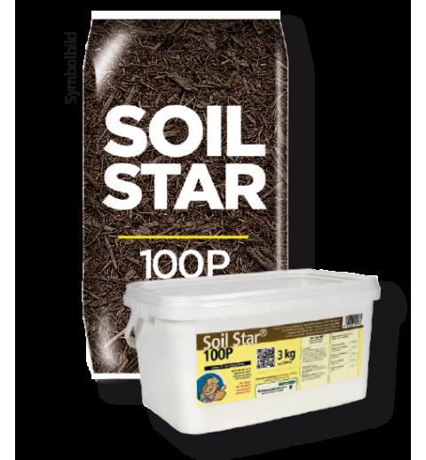 Bodenfestiger Soil Star 100P granuliert