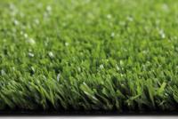 Royal Grass® XPlay